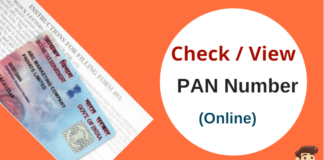 check pan card number online