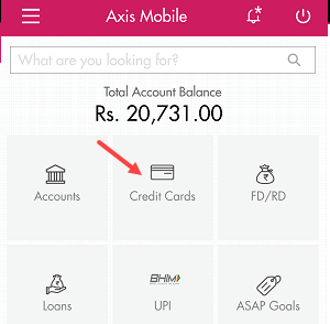 Check axis bank forex card balance