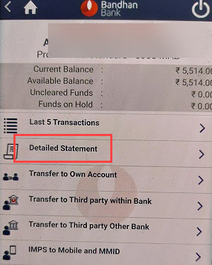 Bandhan Bank account statement